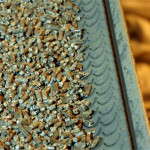 Big retailers can't meet demand for wood fuel pellets
