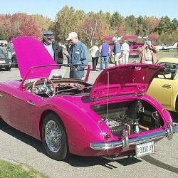 Restored roadster reaps rewards