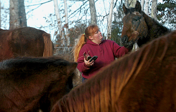 Priscilla Greenleaf, volunteer barn manager at the Last Chance Ranch in Troy, strokes one of the horses while brushing them Wednesday.  Buy Photo