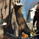 Minnesota officials bemoan deer stand 'mansions'