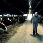 Dairy farmers survive 'milk cliff,' but feed, fuel costs still troubling