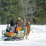 Sleigh competitions enjoyable for participants and spectators