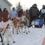 Sled dog racers to go to 'Brownville and Beyond' on Saturday