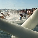 Pleasant Point Polar Bear Dip nets $10,000