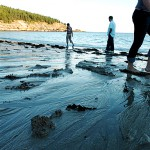 Springtime visits to national parks plunge; Acadia official blames wet weather