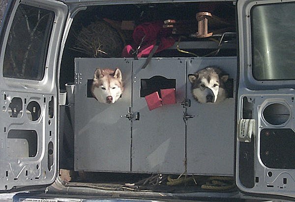 Siberian huskies Pecoe-Turrell (left) and Alaska-Tu, owned by Lyndon Pendleton of Lincolnville, arrived to give a sled dog demonstration during Saturday's WinterFest at the Owls Head Transportation Museum.  Buy Photo