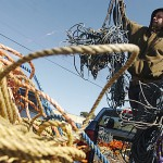Rope rule, economics have lobstermen 'on edge'