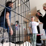 Houlton event touts pet adoption