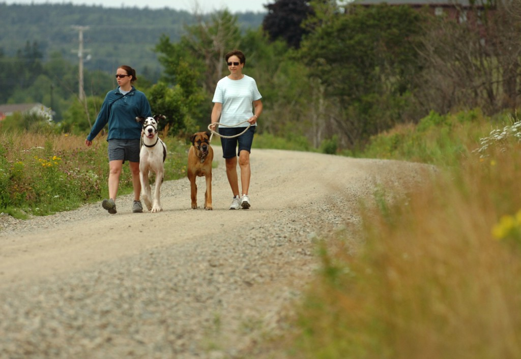 Candace Bunker of Surry (left) walks Murphy as her mother Linda Conley of Ellsworth walks Sophie on the Sunrise Trail in Machias on Tuesday, July 21, 2009. The first 32-mile section of the multi-purpose trail connecting Whitneyville to Pembroke will officially open in August. The trail, built over 87 miles of former railroad beds, will soon stretch from Ellsworth to Ayers Junction at Charlotte when completed in the summer of 2010. (Bangor Daily News/Bridget Brown)
