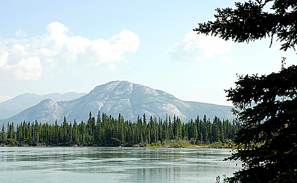 Mount Sam McGee rises from the spruce and fir forest where the Yukon River meets Lake Labarge. (Julia Bayly photo)