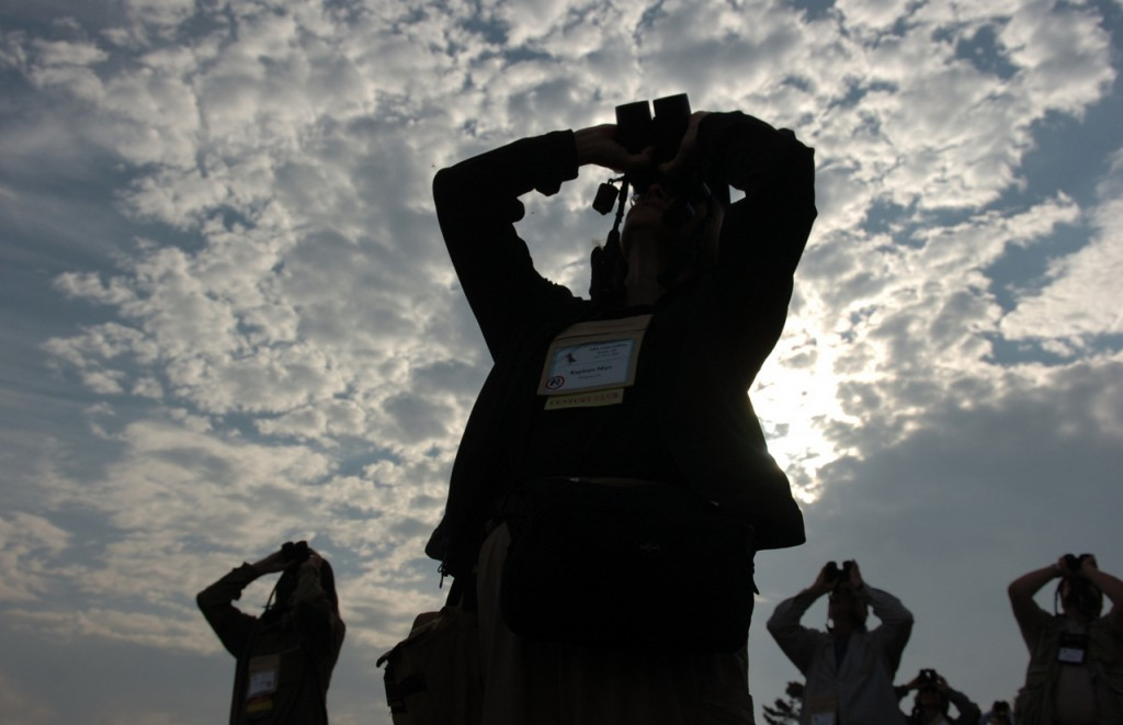 Bird-watchers turn their eyes to the sky Tuesday in the early morning light at Schoodic Peninsula in Acadia National park. The field trip was one of several offered as part of the American Birding Association's 2006 convention, which is being held this week in Bangor. More than 500 birders from throughout the nation are attending the convention, which continues through June 25. (BANGOR DAILY NEWS PHOTO BY KATE COLLINS)
