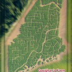 County farm creates UMaine black bear corn maze