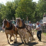 Throngs flock to Blue Hill fair
