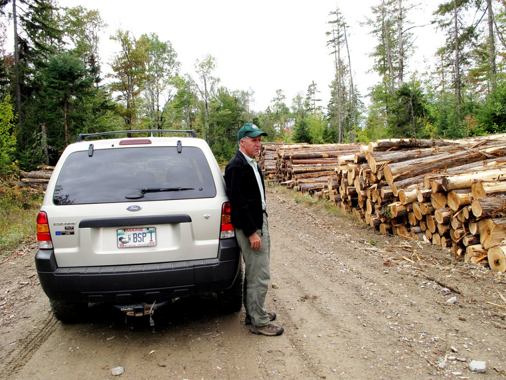 Jensen Bissell, director of Baxter State Park, surveys the stacks of logs from a recent timber harvesting operation in the park's Scientific Forest Management Area on Monday, Sept. 14, 2009. Comprising roughly 29,000 acres in the park's northwest corner, the SFMA is the only location in Baxter where logging occurs. Former Gov. Percival Baxter set up the SFMA as a place where cutting-edge forestry and research could be carried out. (Bangor Daily News/Kevin Miller)