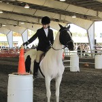 Annual ride to benefit therapeutic riding center