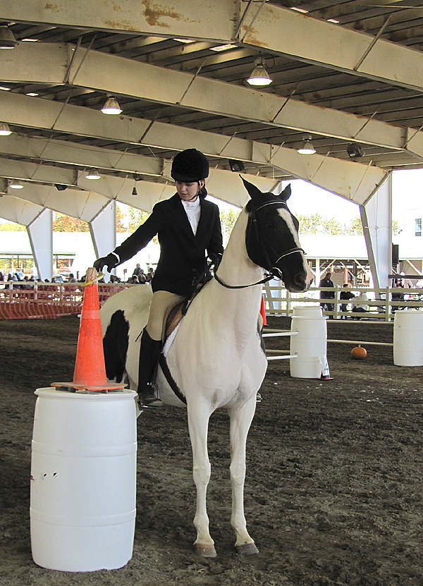 (this is the competitor whom the story leads with)  Brooke Lefebvre of Waterville, by placing the ring over the cone, finishes her first-place performance in the &quotworking trails&quot event during the Special Olympics Maine Equestrian Competition Saturday in Skowhegan. The horse, Erica, was a gift from her parents two weeks ago. (Bangor Daily News/Christopher Cousins)