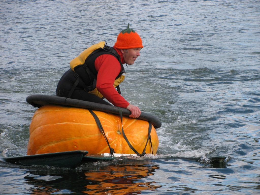 Buzz Pinkham zooms around the Damariscotta River Sunday afternoon in his 2.5 horsepower pumpkin boat. He helped found the festival in 2005, when just one pumpkin boat hit the water. (Bangor Daily News/Abigail Curtis)