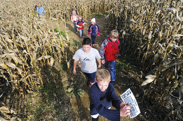 Kids, parents get lost together in Corinna farm's corn maze