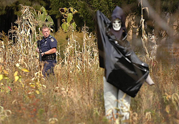 Amid corn stalks and Halloween decorations, a Maine State Police officer scours the property at a home on the Pratt Road in Newport on Tuesday, Oct. 27, 2009 during a manhunt for Perley Goodrich Jr., 45, who is wanted for questioning in connection with the shooting of his father, Perley Goodrich Sr., 76, both of Newport. The shooting took place late Monday night at the Goodrich home at 146 Rutland Road in Newport where Goodrich Jr. resided with his two parents. Police officials say Goodrich is considered to be armed and dangerous and is asking anyone who has contact with him to call State Police in Orono. (Bangor Daily News/Bridget Brown)