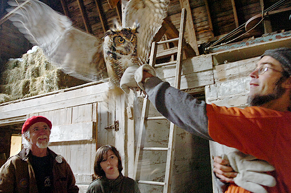 Ed Peteraf (left) and his daughter Laura, 10, of Orrington watch as Grayson Richmond of Birdsacre in Ellsworth handles Shiloh, a great horned owl, following a presentation featuring three live owls at the Curran Homestead Living History Farm and Museum on Saturday, Oct. 31, 2009 in Orrington. (Bangor Daily News/Bridget Brown)