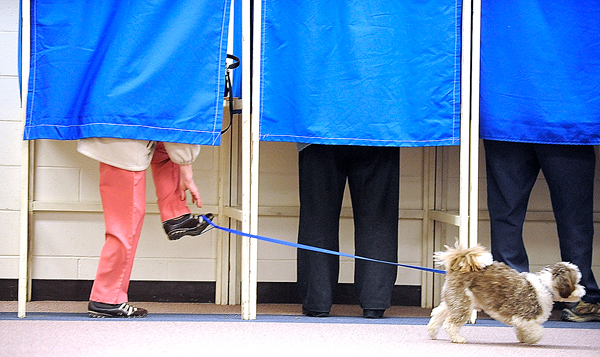 Christine Dyer of Bangor untangles her foot from the leash of her  five-year-old Lhasa apso &quot Toby&quot as she finished filling out her ballot during early voting Monday afternoon at the Bangor Civic Center. She said she came to the polls a day early to avoid Tuesday's lines and wished the Garland Street polling location was been open this year because she likes to walk to the polls from her home.    BANGOR DAILY NEWS PHOTO BY JOHN CLARKE RUSS