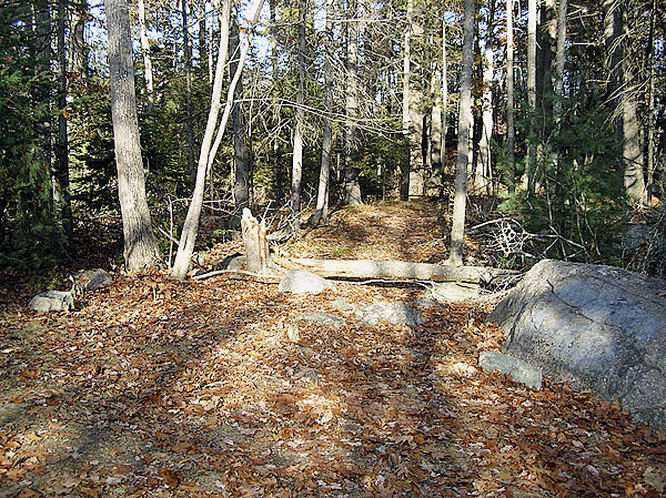This clearing off the Shore Road in Ellsworth was the site of a regular fight club that pitted teenagers against each other in bare-fisted bouts. Police have broken up the club and charged five juveniles and one adult with unlawful prize fighting. Buy Photo