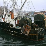 Changes seen in Atlantic region from climate, commercial fishing