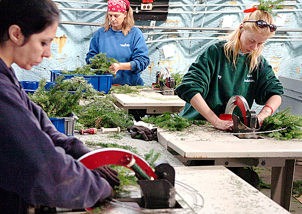 Beverly Silvia (from left), Kim Drasler and Amy Ciarcia make balsam fir wreaths on 12-inch-rings at Kelco Industries on Thursday, Nov. 12, 2009 in Milbridge. The company also makes and sells a 15-inch size wreath. BANGOR DAILY NEWS PHOTO BY BRIDGET BROWN