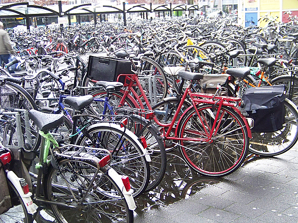 Everybody has a bike: a storage place for bicycles near the train station in Utrecht, Holland. Storage facilities for bicycles abound in Holland and often contain thousands of bicycles. (Photo courtesy of Levi Bridges)