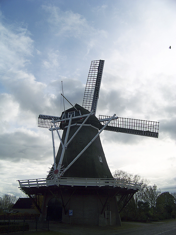Common sights: A Dutch windmill rises on the horizon near a bridge over a small canal. (Photo courtesy of Levi Bridges)