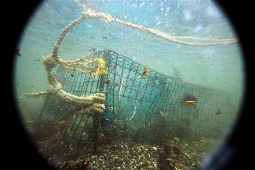 In this Friday, Nov. 13, 2009 photo, a lost lobster trap sits on the ocean floor off Biddeford, Maine. Marine biologists say &quotghost traps&quot lost by lobstermen continue to catch lobsters as they sit untended in the cold ocean waters off Maine's coast. This winter lobstermen will grapple up gear from selected spots in the first large-scale study of ghost traps. (AP Photo/Robert F. Bukaty)