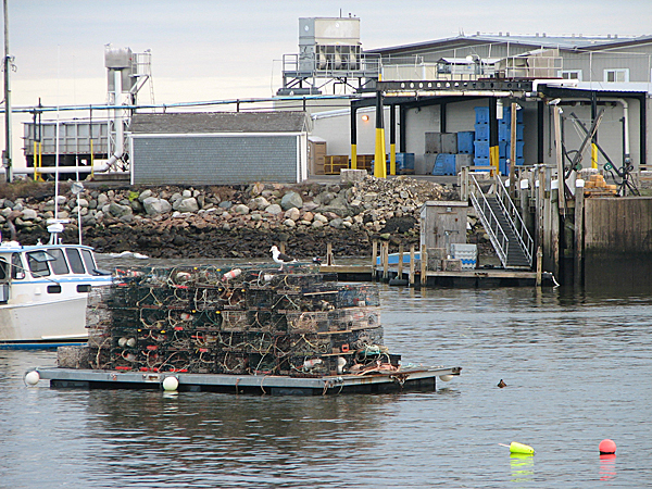 The Stinson Seafood Cannery sits right on the water in the Gouldsboro village of Prospect Harbor. Officials at the plant and with the town said Friday they are concerned that reduced herring catch limits may have an adverse effect on the cannery, which employs 130 people.