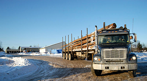 A loaded logging truck heads out of the logging yard at Treeline Inc. of Lincoln on Friday. A new federal law, which Gov. John Baldacci helped enact with emergency state legislation on Thursday, now allows such trucks weighing as much as 100,000 pounds on interstates north of Augusta.  BANGOR DAILY NEWS PHOTO BY NICK SAMBIDES JR.