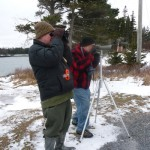 Maine birders take part in Christmas Bird Count