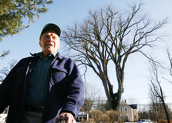 In this Monday, Dec. 14, 2009 photo Frank Knight, 101, of Yarmouth, Maine, stands in front of an elm tree known as &quotHerbie&quot in Yarmouth. Knight, who is recently retired, took care of the tree for about 50 years while working as the Yarmouth tree warden.  The tree, estimated to be over 225 years old and scheduled to be cut down on Martin Luther King Day Jan.  18, 2009, has suffered numerous bouts of Dutch elm disease. (AP Photo/Steven Senne)