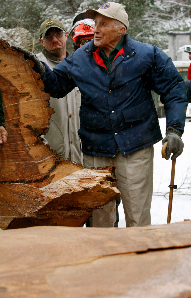 Frank Knight, of Yarmouth, Maine, 101 years old, who has been Herbie the tree's caretaker for over half a century, puts a caring hand on Herbie after it was cut down in Yarmouth, Maine,  on Tuesday, Jan. 19, 2010. Herbie is New England's largest and oldest elm tree. The tree succumbed to Dutch elm disease after surviving 14 previous bouts with the fungus. The massive tree is estimated to be 240 years old. Its exact age will be known after officials count the growth rings in the trunk. (AP Photo/Pat Wellenbach)