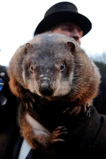 FILE - In this file from Feb. 2, 2009, John Griffiths, a handler of the weather-predicting groundhog Punxsutawney Phil, holds Phil after removing him from his stump at Gobbler's Knob on Groundhog Day, in Punxsutawney, Pa.. The state's tourism department says Phil will text his weather prediction to those who sign up to have texts sent to their mobile phones. (AP Photo/Carolyn Kaster)