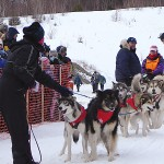 With miles to go, mushers take time to enjoy scenery