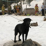 Lamoine fire tests new mutual aid pact