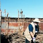 Calais surgeon offers services in Haiti