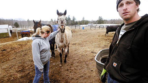 Brett Ingraham (right) and his wife Alexis (left) run Fair Play Farm a horse farm in Clinton.  The Ingrahams have been accused of being inhumane to the animals on their farm.  They say that they do have horses that are in bad condition, but that is because they are willing to take in animals that may be sick or have been neglected and they nurse them back to health. &quotThere is no problem here.  Anyone who wants to come and see for themselves is welcomed. We have nothing to hide.&quot Brett said. (Bangor Daily News/Gabor Degre)
