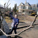 Winds topple trees, cut electricity