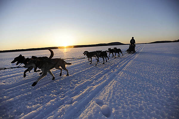 Musher Christine RIchardson of Canaan, NH and her dogs approach the Portage Lake checkpoint in Portage Lake, Maine for the Can-Am Crown 250 shortly before sundown Saturday, March 6, 2010. (Bangor Daily News/John Clarke Russ)