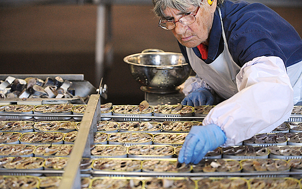 Seventyeight-year-old Lela Anderson works on the packing line of the Stinson Sardine Cannery in Prospect Harbor Thursday morning. Anderson has been working at the cannery for 54 years.  (Bangor daily News/Gabor Degre)