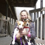 Executive director of The Ark Animal Shelter plans outreach, fund-raisers2012