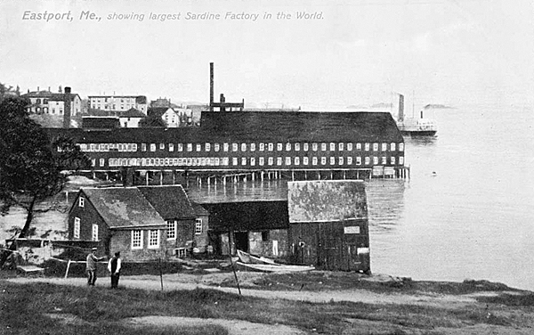 An old post card of the Eastport waterfront, with the caption &quotEastport, Me., showing the largest Sardine Factory in the world.&quot PHOTO COURTESY OF BORDER HISTORICAL SOCIETY