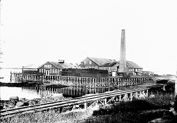 A photograph from the Eastern Illustrating & Publishing Company Collection of the sardine factories in Prospect Harbor circa 1920. (Photo courtesy of Penobscot Marine Museum)