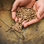 Three Maine wood pellet producers receive biofuel grants