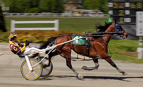 Cams Knight Dream, driven by Ron Cushing, takes first place in race two on the opening day of harness racing at Hollywood Slots Hotel & Raceway on May 11, 2010.
