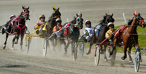 Drivers and their horses start to spread out down a straightaway during the first harness race on opening day at Hollywood Slots Hotel & Raceway Tuesday afternoon, May 11, 2010. BANGOR DAILY NEWS PHOTO BY JOHN CLARKE RUSS